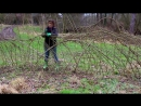 Живая изгородь Ажурное плетение из растущей вербы Мастер класс 1