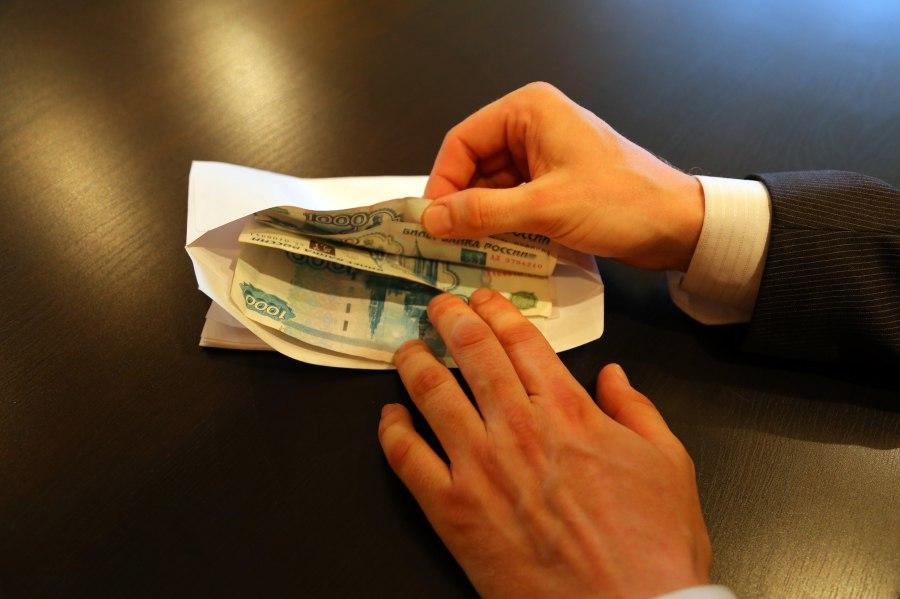Главный лесничий Тимирязевского подозревается в получении взяток