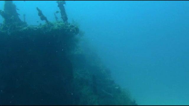 Тайны планеты Земля 25 серия. Коралловый риф: Охотники и жертвы / Secrets of the Earth (2013)
