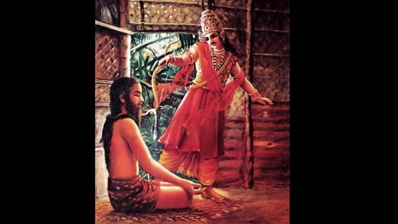 Шримад Бхагаватам. Гл 18 Сын брахмана проклинает Махараджу Парикшита
