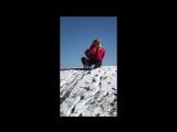 Зимние развлечения для собаки