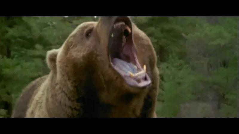 Побег от медведя - людоеда