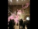 Futuro gallery ❤️