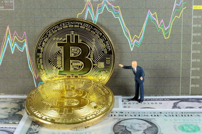 В какую криптовалюту вкладываться gandicup криптовалют