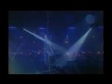 Didier Marouani  - Let me know the wonder