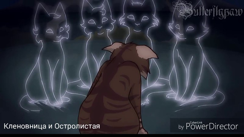Ежевика и Коршун~Звездное Племя и Сумрачный Лес