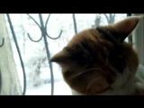 love story by boyarskiy