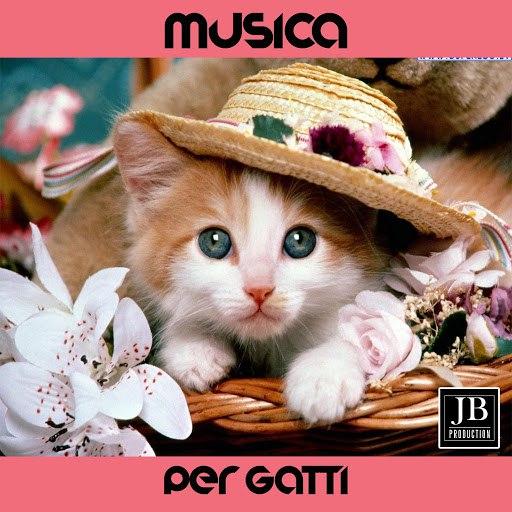 Fly Project альбом Musica Per Gatti