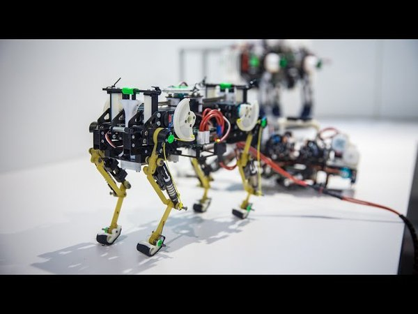 Awesome BioRobots Inspired by Animal Movements!