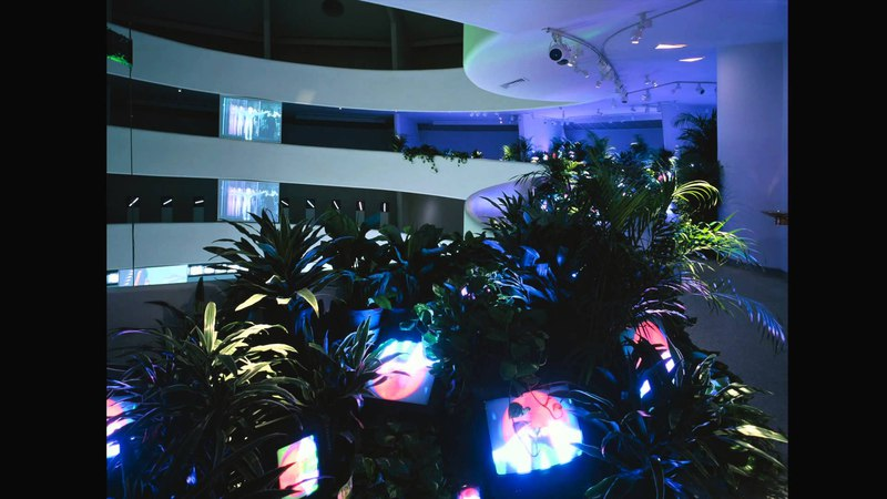 Nam June Paik Global Visionary - Exhibition Preview