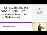 Геннадий Ковшенин: Взаимодействие с WordPress через командную строку