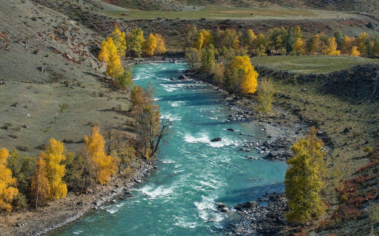 Афиша Челябинск Тур на Алтай из Челябинска