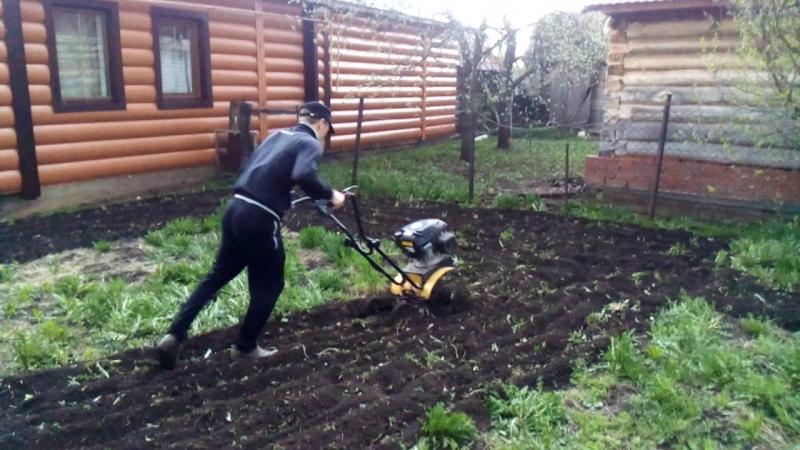 Коля пашет огород