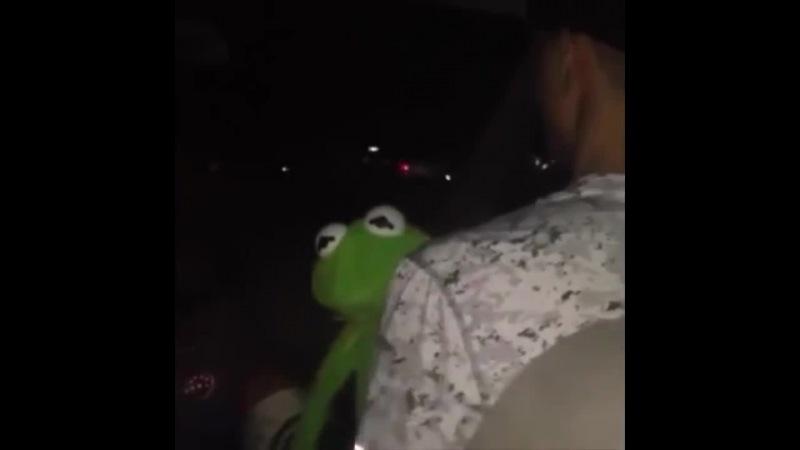 Kermit the frog hittin those notes 😂