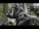 Планета обезьян Революция / Dawn of the Planet of the Apes 2014 Озвученный трейлер