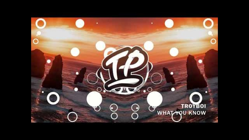 TroyBoi - What You Know (Original Mix)