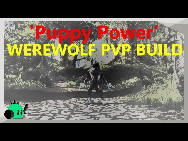 Puppy Power Werewolf Build for ALL Stamina classes | Dragon Bones Patch