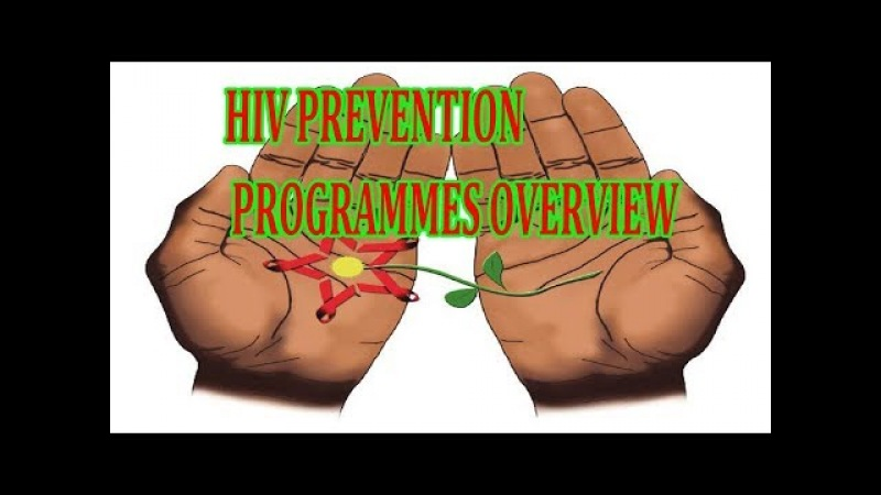 HIV PREVENTION PROGRAMMES OVERVIEW ✅ HIV AIDS