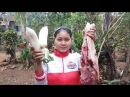 Awesome Cooking White Radish W Pork Delicious Recipe Cook Pork Recipes Village Food Factory