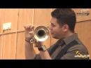 Подбородок и ноздри при игре на трубе в верхнем регистре Алимов artvlog