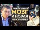 Мозг и новая информация Кто здесь главный 2 серия Вячеслав Дубынин