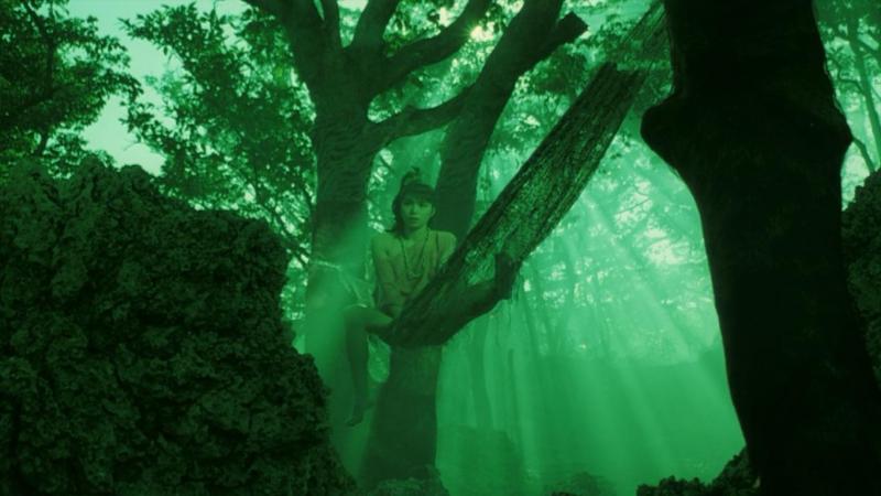 Farewell to the Ark - Shûji Terayama (1984).