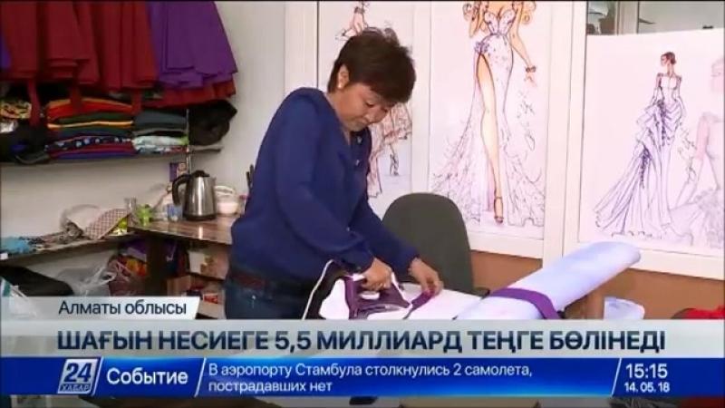 Алматы облысының тұрғындарына шағын несие беру үшін 5,5 млрд теңге бөлінеді