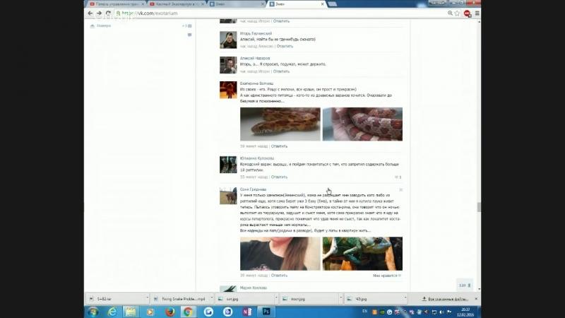 12.02.2016 Частный Экзотариум в прямом эфире)) чэ