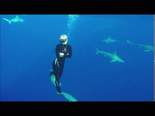 Ocean Ramsey - Diving with Sharks