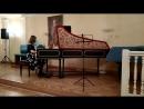Клавесин концерт в музее