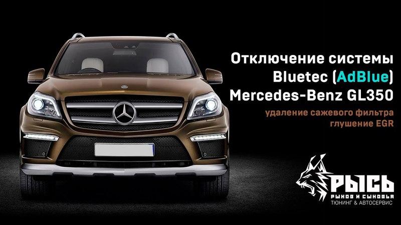 Отключение системы Bluetec (AdBlue), Сажевого фильтра и EGR Mercedes-Benz GL в Самаре