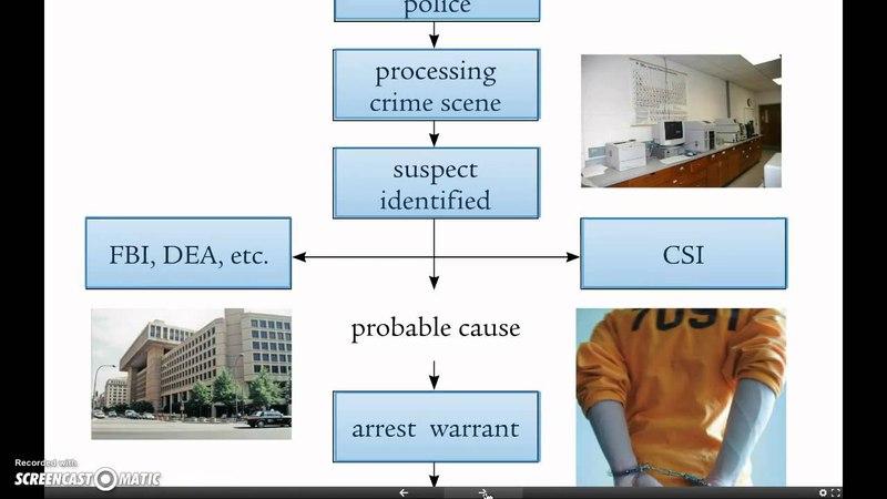Unit 1, Lecture 3 - The Criminal Justice System