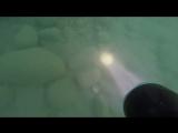 Подводная охота на ракушку