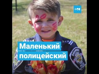 Полиция милоты