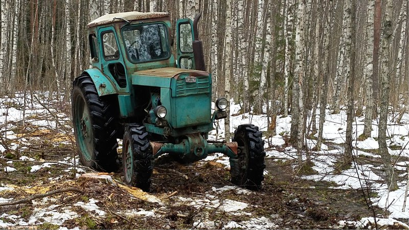 Tractor T40AM in forest 2/Трактор Т40АМ в лесу 2