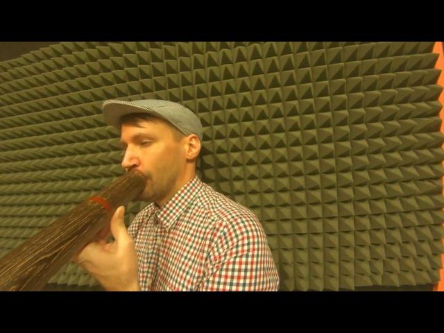 5 вкусных диджериду-ритмов (Школа диджериду Австралия)