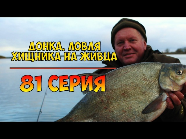 Серия 81. Донка. Ловля хищника на живца. Рыбалка с Нормундом Грабовскисом.