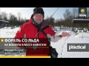 Форель со льда на воблеры класса Vibration ратлины М Холуев А Рыжов Anglers Practical
