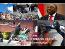 SOS Белые из Африки просят спасти их от геноцида черных