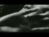 Wumpscut - your last salute (air forge remix)