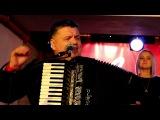 Родники - Белая черёмуха (Live)