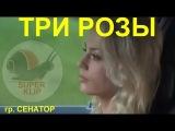 НОВИНКА! группа СЕНАТОР