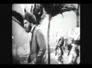 Woolly Bully   ~Sam The Sham & Pharaohs