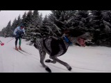 Red Fox Adventure Team ski camp