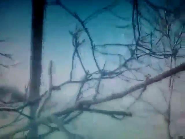 18. Военная разведка ополчения ДНР (Military secret service of militia of ДНР).mp4