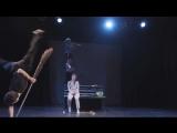 Упсала-цирк