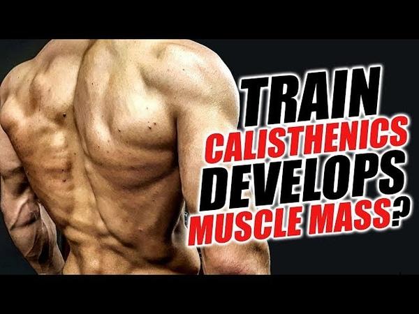 Возможно ли набрать мышечную массу тренируясь калистеникой