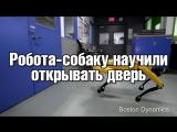 Робота-собаку научили открывать дверь