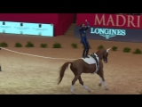 Lukas Heppler nudges his way into the lead _ FEI World Cup™ Vaulting Madrid