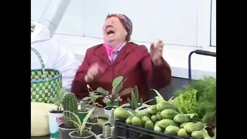 Бабка смеётся над Никитой лохом